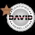 David Vision Systems GmbH